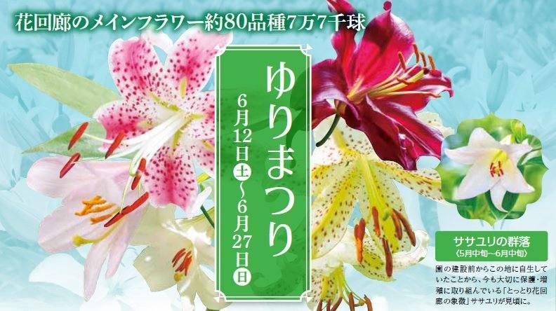 6/12(土)~ ゆりまつりチラシ