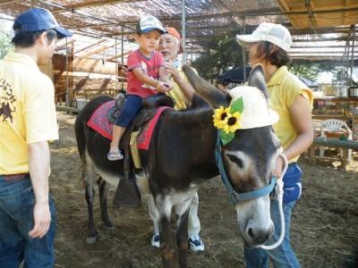 動物村%u30002011.7.16-8.21