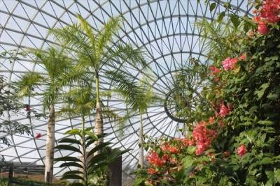 ガラス張りの大温室フラワードーム